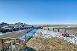 Photo 42: 27 SKYVIEW SPRINGS Cove NE in Calgary: Skyview Ranch Detached for sale : MLS®# A1053175