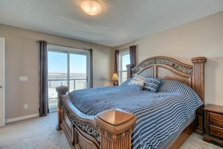 Photo 26: 27 SKYVIEW SPRINGS Cove NE in Calgary: Skyview Ranch Detached for sale : MLS®# A1053175