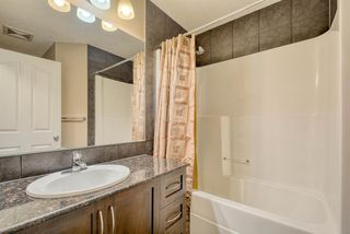 Photo 25: 27 SKYVIEW SPRINGS Cove NE in Calgary: Skyview Ranch Detached for sale : MLS®# A1053175