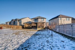 Photo 50: 27 SKYVIEW SPRINGS Cove NE in Calgary: Skyview Ranch Detached for sale : MLS®# A1053175