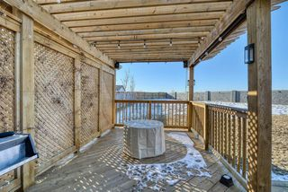 Photo 46: 27 SKYVIEW SPRINGS Cove NE in Calgary: Skyview Ranch Detached for sale : MLS®# A1053175