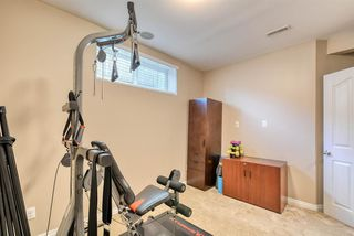 Photo 39: 27 SKYVIEW SPRINGS Cove NE in Calgary: Skyview Ranch Detached for sale : MLS®# A1053175