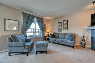 Photo 13: 27 SKYVIEW SPRINGS Cove NE in Calgary: Skyview Ranch Detached for sale : MLS®# A1053175