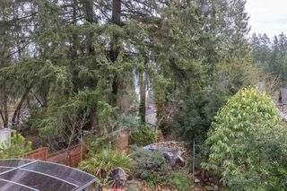 Photo 12: 2006 PANORAMA Drive in North Vancouver: Deep Cove House for sale : MLS®# R2526705