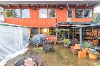 Photo 23: 2006 PANORAMA Drive in North Vancouver: Deep Cove House for sale : MLS®# R2526705