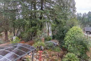 Photo 17: 2006 PANORAMA Drive in North Vancouver: Deep Cove House for sale : MLS®# R2526705
