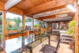 Photo 4: 2006 PANORAMA Drive in North Vancouver: Deep Cove House for sale : MLS®# R2526705