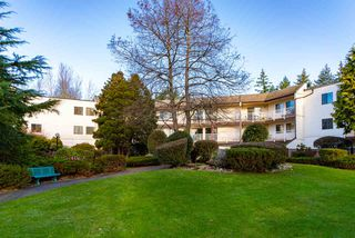 "Main Photo: 209 12890 17 Avenue in Surrey: Crescent Bch Ocean Pk. Condo for sale in ""Ocean Park Place"" (South Surrey White Rock)  : MLS®# R2412955"