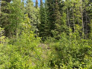 """Photo 5: LOT 6 CHIEF LAKE Road in Prince George: Nukko Lake Land for sale in """"CHIEF LAKE"""" (PG Rural North (Zone 76))  : MLS®# R2464872"""
