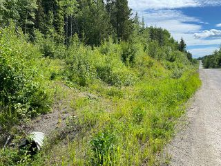 """Photo 2: LOT 6 CHIEF LAKE Road in Prince George: Nukko Lake Land for sale in """"CHIEF LAKE"""" (PG Rural North (Zone 76))  : MLS®# R2464872"""