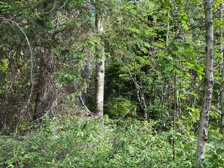 """Photo 3: LOT 6 CHIEF LAKE Road in Prince George: Nukko Lake Land for sale in """"CHIEF LAKE"""" (PG Rural North (Zone 76))  : MLS®# R2464872"""