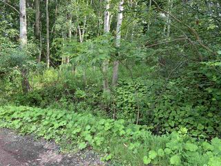 Photo 1: Brook Street in Trenton: 107-Trenton,Westville,Pictou Vacant Land for sale (Northern Region)  : MLS®# 202014523