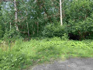 Photo 3: Brook Street in Trenton: 107-Trenton,Westville,Pictou Vacant Land for sale (Northern Region)  : MLS®# 202014523