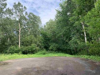 Photo 6: Brook Street in Trenton: 107-Trenton,Westville,Pictou Vacant Land for sale (Northern Region)  : MLS®# 202014523