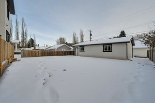 Photo 48: 9803 147 Street in Edmonton: Zone 10 House for sale : MLS®# E4204023