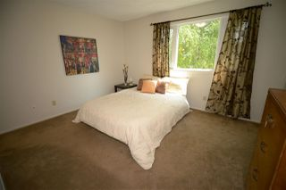 Photo 15: 6412 36 AV NW in Edmonton: Zone 29 House for sale : MLS®# E4159145