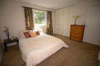 Photo 14: 6412 36 AV NW in Edmonton: Zone 29 House for sale : MLS®# E4159145