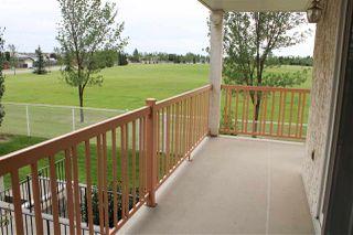 Photo 25: 203 10915 21 Avenue in Edmonton: Zone 16 Condo for sale : MLS®# E4171286