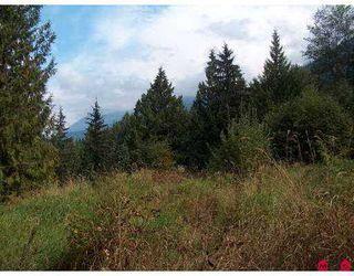 Photo 3: 51365 RUDDOCK RD in Chilliwack: Eastern Hillsides Land for sale : MLS®# H2503417