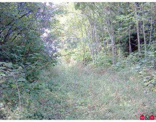 Photo 7: 51365 RUDDOCK RD in Chilliwack: Eastern Hillsides Land for sale : MLS®# H2503417