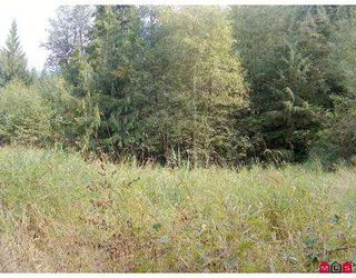 Photo 5: 51365 RUDDOCK RD in Chilliwack: Eastern Hillsides Land for sale : MLS®# H2503417