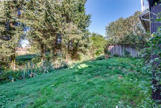 Photo 45: 12105 201 STREET in MAPLE RIDGE: Home for sale : MLS®# V1143036