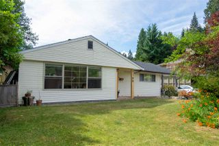 Photo 17: 788 BLYTHWOOD Drive in North Vancouver: Delbrook House for sale : MLS®# R2428425