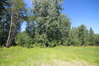 Main Photo: 19 54406 Rge Rd 15: Rural Lac Ste. Anne County Rural Land/Vacant Lot for sale : MLS®# E4202105