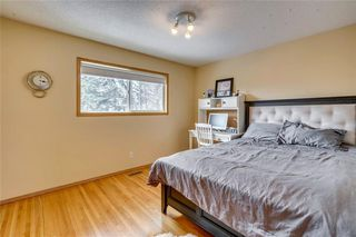 Photo 27: 31 Mapleglade Close SE in Calgary: Maple Ridge Detached for sale : MLS®# C4306139