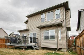Photo 28: 58 KINGSLAND Way SE: Airdrie Detached for sale : MLS®# A1028143
