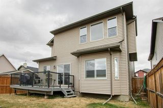 Photo 59: 58 KINGSLAND Way SE: Airdrie Detached for sale : MLS®# A1028143