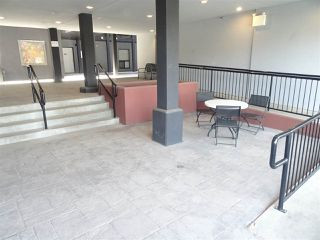 Photo 3: 108 10518 113 Street in Edmonton: Zone 08 Condo for sale : MLS®# E4214994