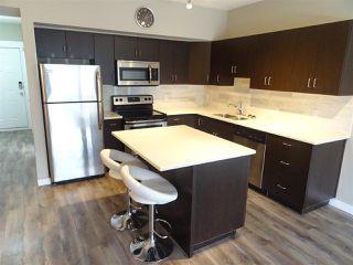 Photo 5: 108 10518 113 Street in Edmonton: Zone 08 Condo for sale : MLS®# E4214994