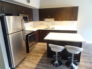 Photo 6: 108 10518 113 Street in Edmonton: Zone 08 Condo for sale : MLS®# E4214994