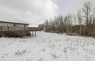 Photo 11: 60 27507 TWP RD 544: Rural Sturgeon County House for sale : MLS®# E4221901