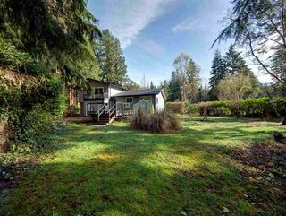 Photo 19: 1085 ROBERTS CREEK Road: Roberts Creek House for sale (Sunshine Coast)  : MLS®# R2392415