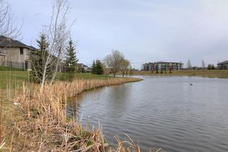Photo 16: #104 6083 MAYNARD WY NW in Edmonton: Zone 14 Condo for sale : MLS®# E4165066