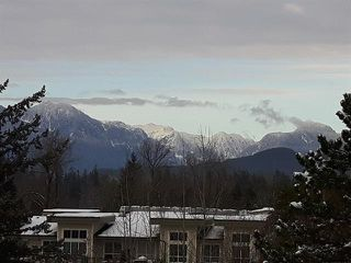 "Photo 13: 417 12283 224 Street in Maple Ridge: West Central Condo for sale in ""THE MAXX"" : MLS®# R2436038"