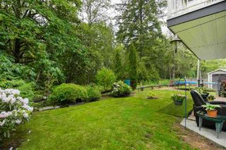 Photo 19: 23907 115A Avenue in Maple Ridge: Cottonwood MR House for sale : MLS®# R2442943