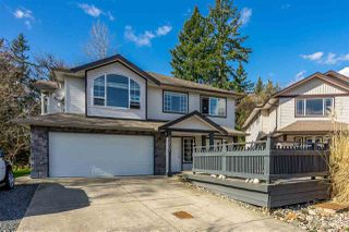 Photo 1: 23907 115A Avenue in Maple Ridge: Cottonwood MR House for sale : MLS®# R2442943