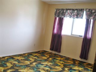 Photo 14: 5007 56 Avenue: Stony Plain House for sale : MLS®# E4197371