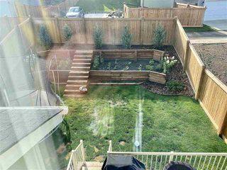 Photo 31: 1254 PEREGRINE Terrace in Edmonton: Zone 59 House for sale : MLS®# E4211748