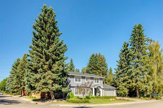 Photo 50: 7311 11 Street SW in Calgary: Kelvin Grove Detached for sale : MLS®# A1049038