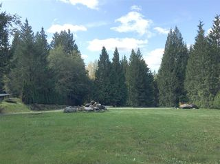 Main Photo: 12139 269 Street in Maple Ridge: Northeast Land for sale : MLS®# R2402040