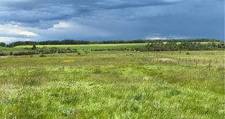 Photo 6: 320232 Range Road 23: Rural Mountain View County Land for sale : MLS®# A1015216