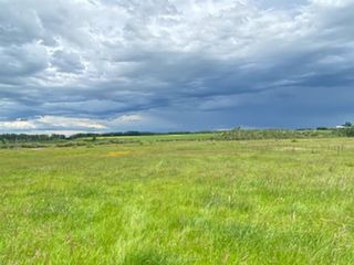 Photo 7: 320232 Range Road 23: Rural Mountain View County Land for sale : MLS®# A1015216