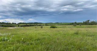 Photo 1: 320232 Range Road 23: Rural Mountain View County Land for sale : MLS®# A1015216