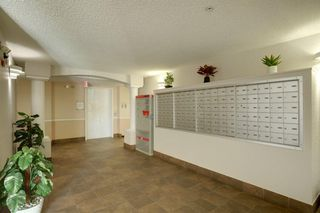 Photo 27: 1220 6224 17 Avenue SE in Calgary: Red Carpet Apartment for sale : MLS®# A1039323
