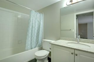 Photo 22: 1220 6224 17 Avenue SE in Calgary: Red Carpet Apartment for sale : MLS®# A1039323