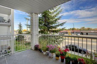 Photo 26: 1220 6224 17 Avenue SE in Calgary: Red Carpet Apartment for sale : MLS®# A1039323